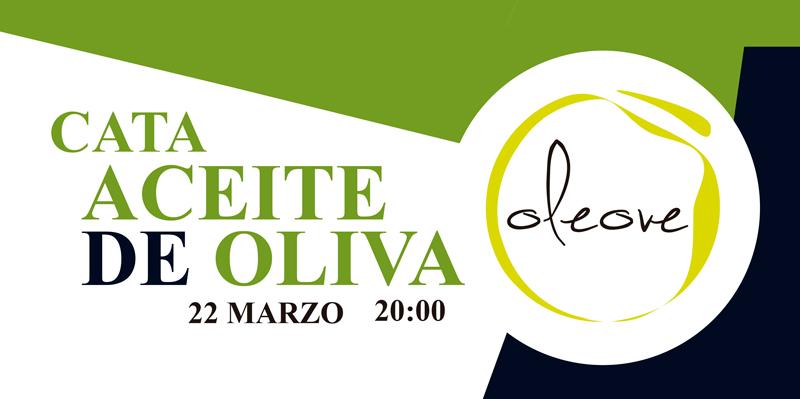 Cata Aceite de Oliva en Málaga